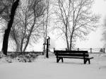 winter2010_12