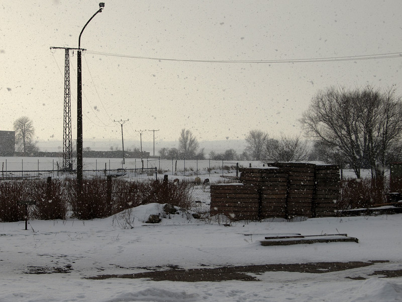 winter2010_2