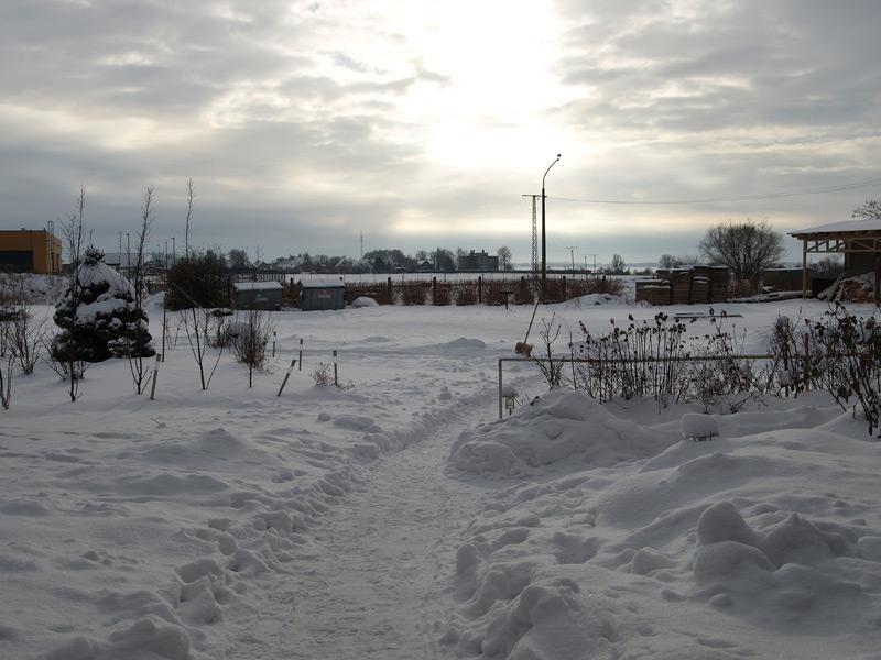 winter2010_3