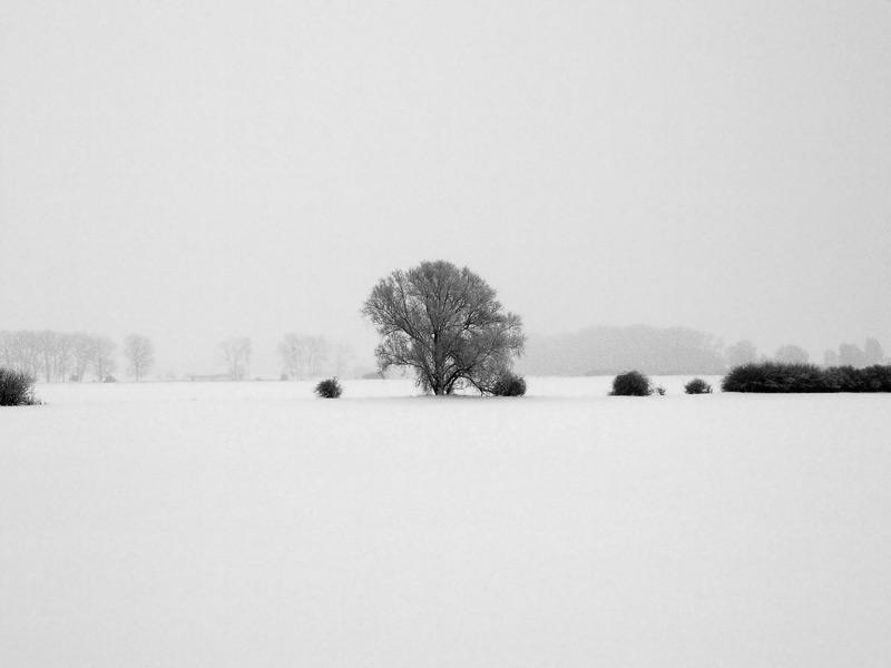 winter2010_6