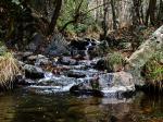 Fluss im Troodos