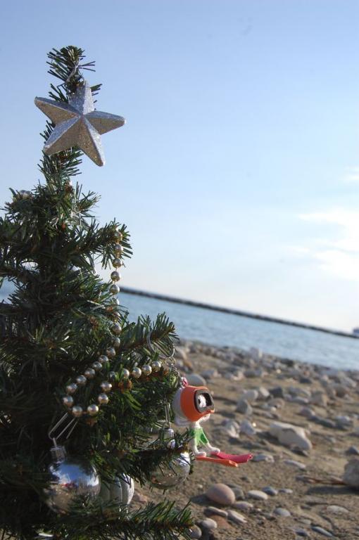 Weihnachtsbaum am Strand